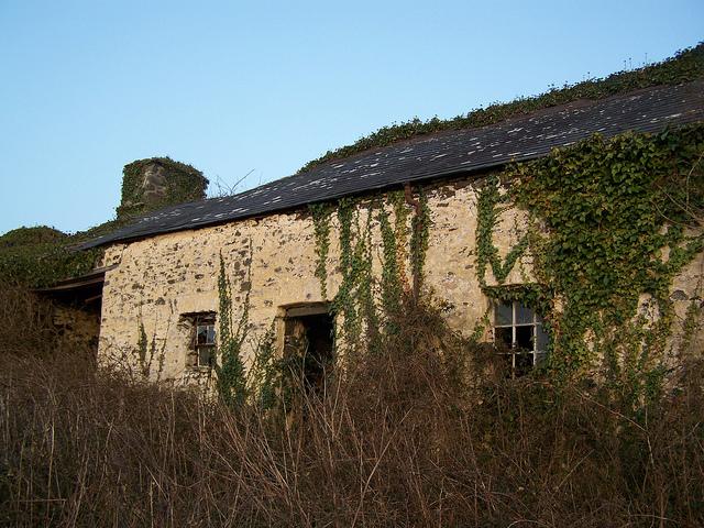Abandoned cottage, near Aberystwyth, Wales