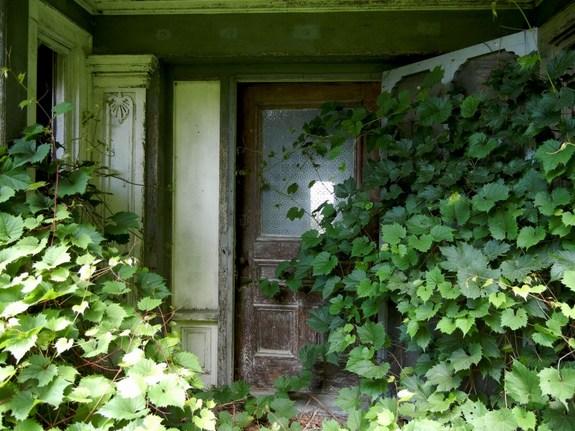 Elgin Springs House, Panton, Vermont - pic 2